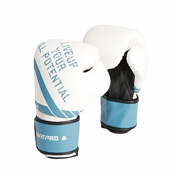 Боксерские перчатки LivePro SPARRING GLOVES-12OZ